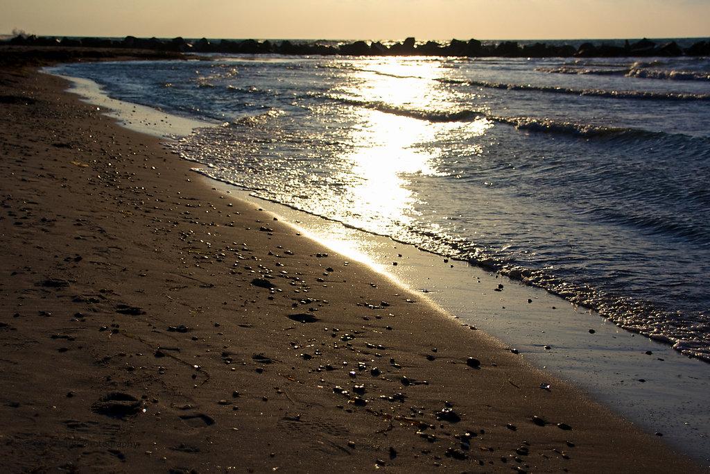 Strand von Ahrenshoop 2